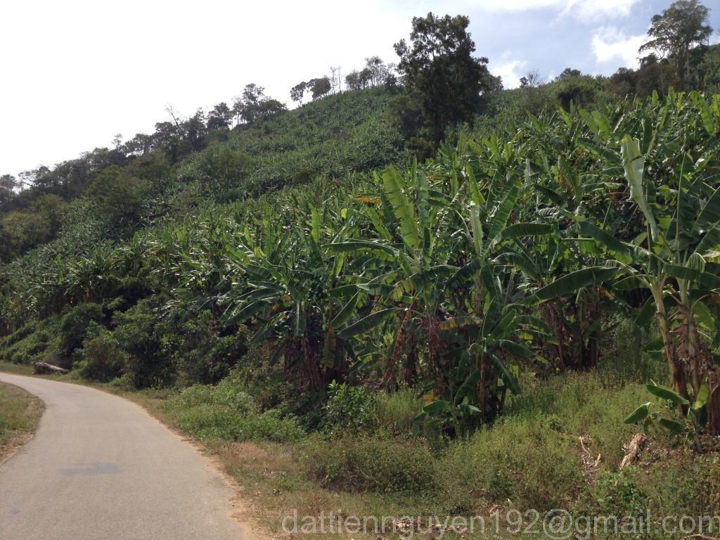 Nha Trang – Da Lat in 2 Days ~ 200 km