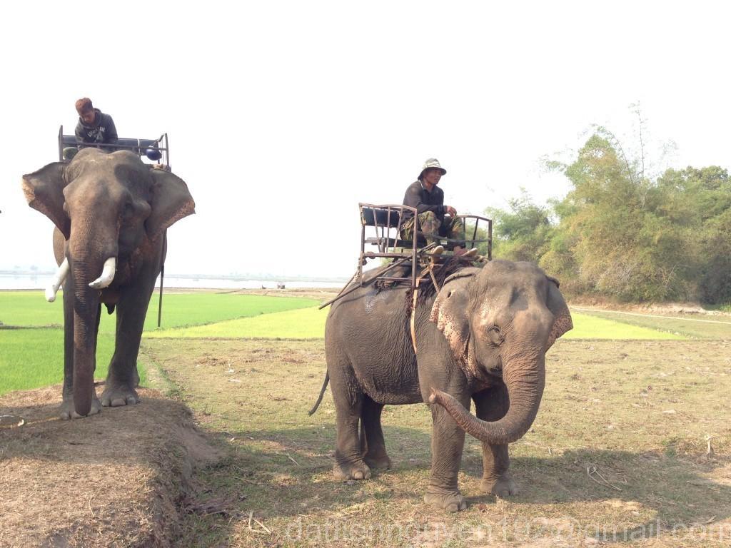 Nha Trang – Da Lat in 2 Days ~ 355 km